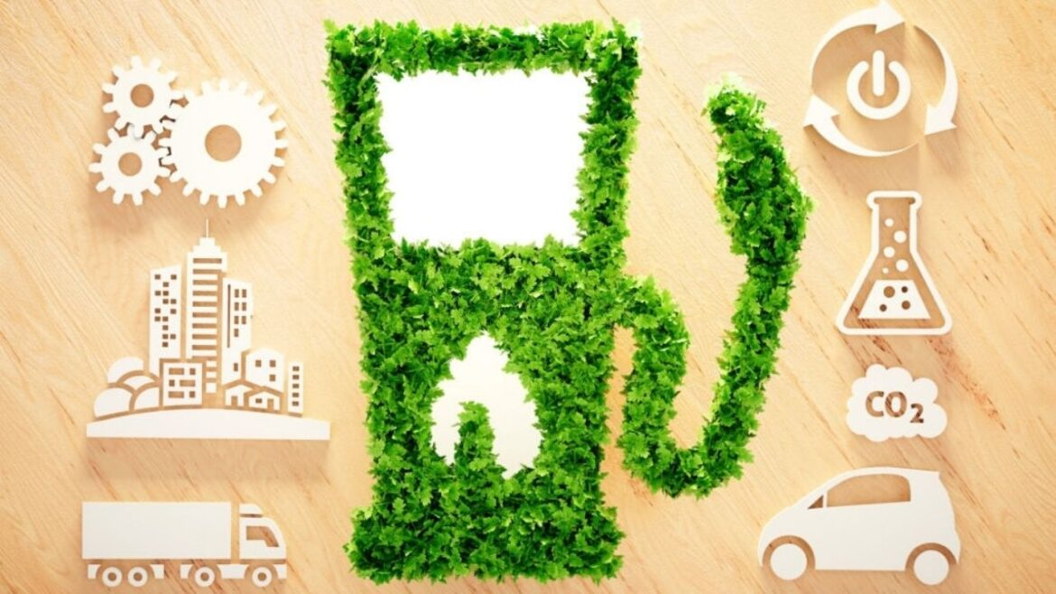 Why Biofuel is Considered Environment Friendly and It's Importance